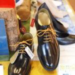 限定靴とか特別靴とかがいろいろある春です